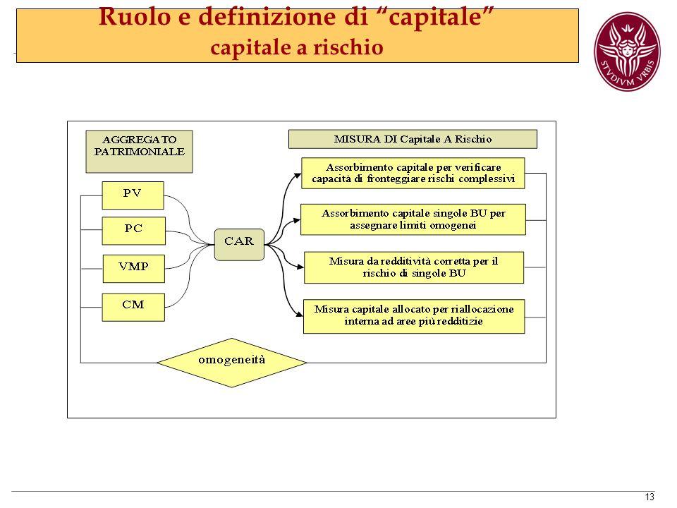 13 Ruolo e definizione di capitale capitale a rischio