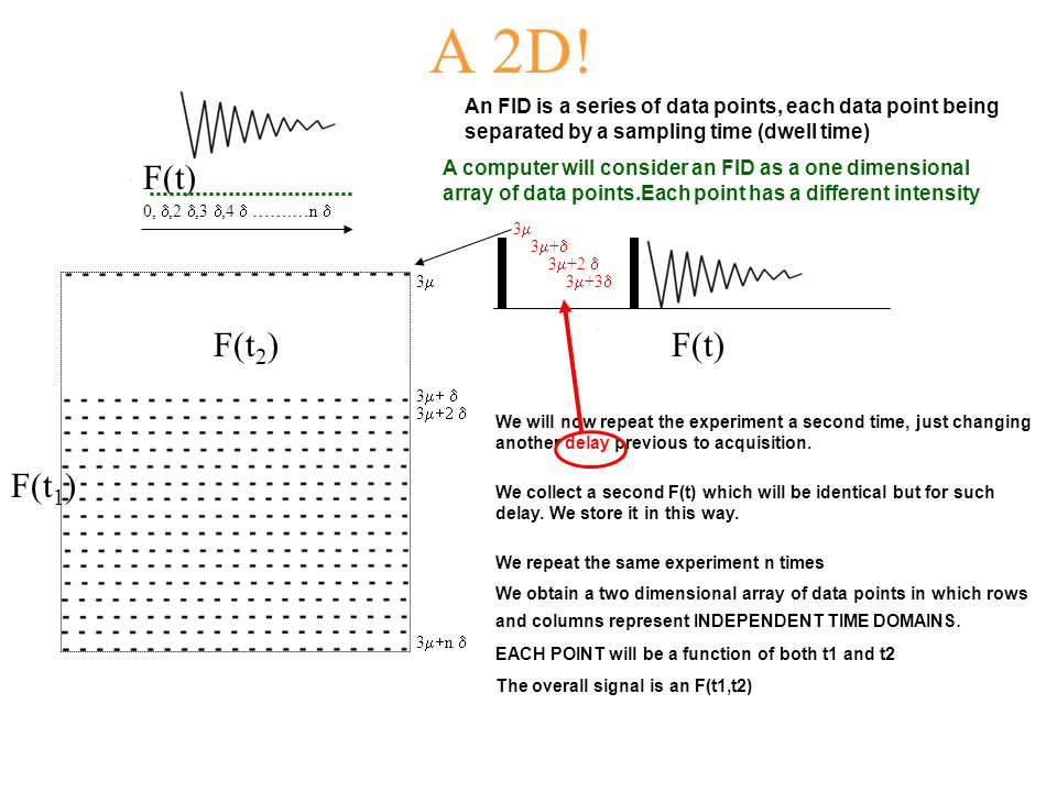 A 2D! An FID is a series of data points, each data point being separated by a sampling time (dwell time) A computer will consider an FID as a one dime