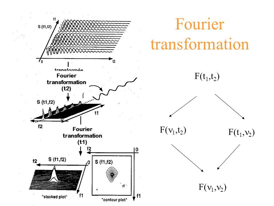 Fourier transformation F(t 1,t 2 ) F( 1,t 2 ) F(t 1, 2 ) F( 1, 2 ) Fourier transformation (t1) Fourier transformation (t2)