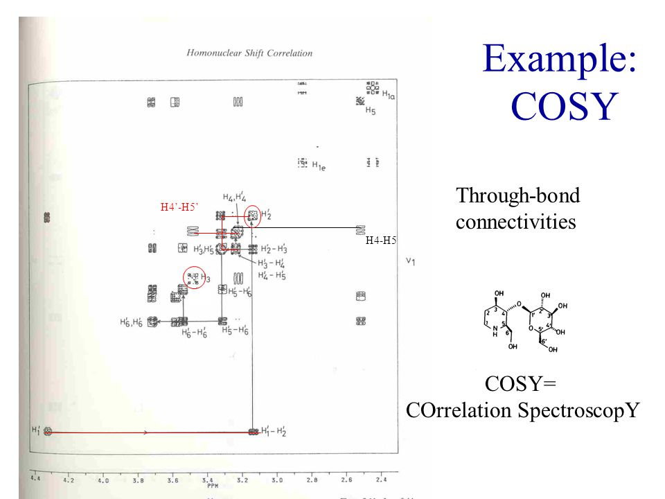 Example: COSY Through-bond connectivities COSY= COrrelation SpectroscopY H4-H5 H4'-H5'