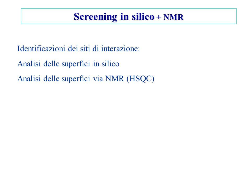 Screening in silico + NMR Identificazioni dei siti di interazione: Analisi delle superfici in silico Analisi delle superfici via NMR (HSQC)
