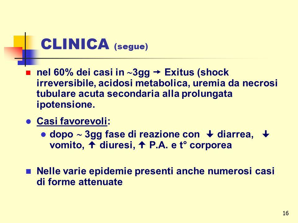 16 CLINICA (segue) nel 60% dei casi in  3gg  Exitus (shock irreversibile, acidosi metabolica, uremia da necrosi tubulare acuta secondaria alla prolu
