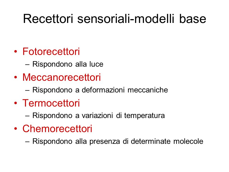 Recettori sensoriali-modelli base Fotorecettori –Rispondono alla luce Meccanorecettori –Rispondono a deformazioni meccaniche Termocettori –Rispondono