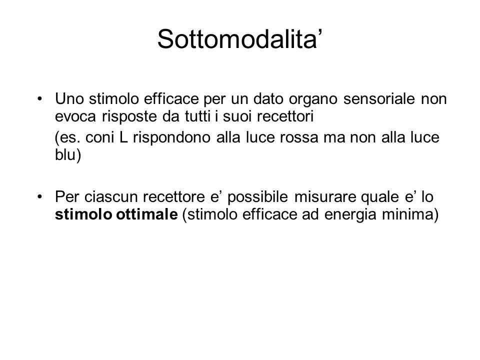 Sottomodalita' Uno stimolo efficace per un dato organo sensoriale non evoca risposte da tutti i suoi recettori (es.