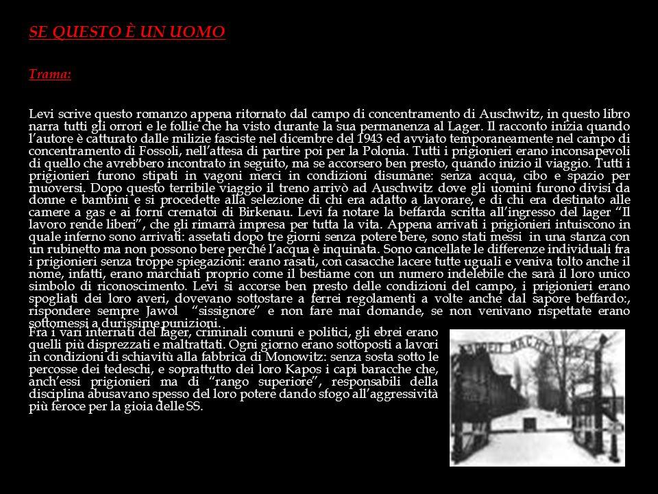 Durante la guerra si unì ai partigiani sulle montagne della Valle D'Aosta. Alla fine del 1943 fu catturato dalle milizie fasciste e deportato nel camp