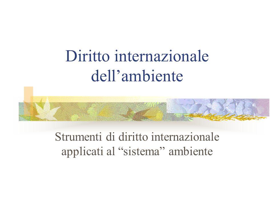 """Diritto internazionale dell'ambiente Strumenti di diritto internazionale applicati al """"sistema"""" ambiente"""
