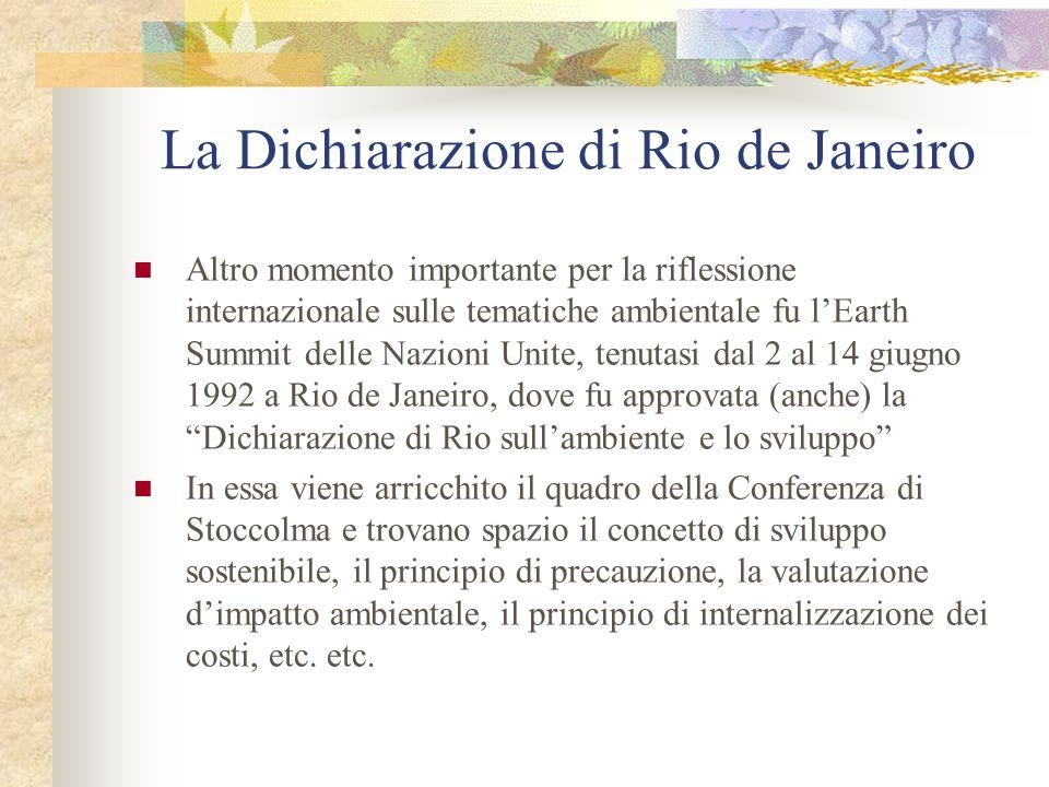 La Dichiarazione di Rio de Janeiro Altro momento importante per la riflessione internazionale sulle tematiche ambientale fu l'Earth Summit delle Nazio