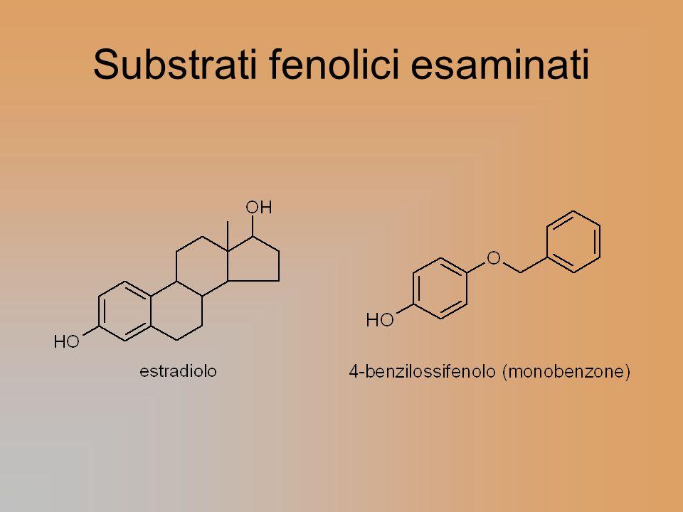 Substrati fenolici esaminati