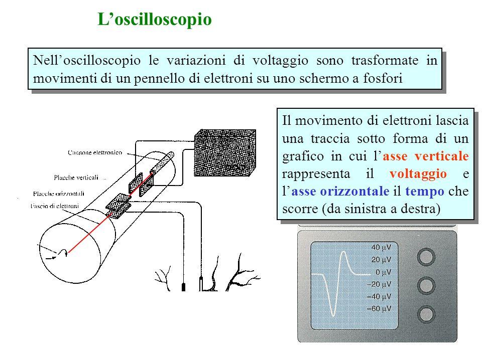 Nell'oscilloscopio le variazioni di voltaggio sono trasformate in movimenti di un pennello di elettroni su uno schermo a fosfori Il movimento di elettroni lascia una traccia sotto forma di un grafico in cui l'asse verticale rappresenta il voltaggio e l'asse orizzontale il tempo che scorre (da sinistra a destra) L'oscilloscopio