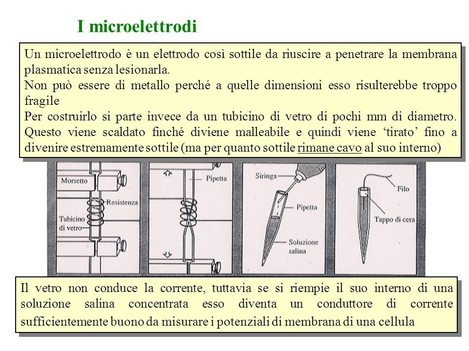Un microelettrodo è un elettrodo così sottile da riuscire a penetrare la membrana plasmatica senza lesionarla. Non può essere di metallo perché a quel