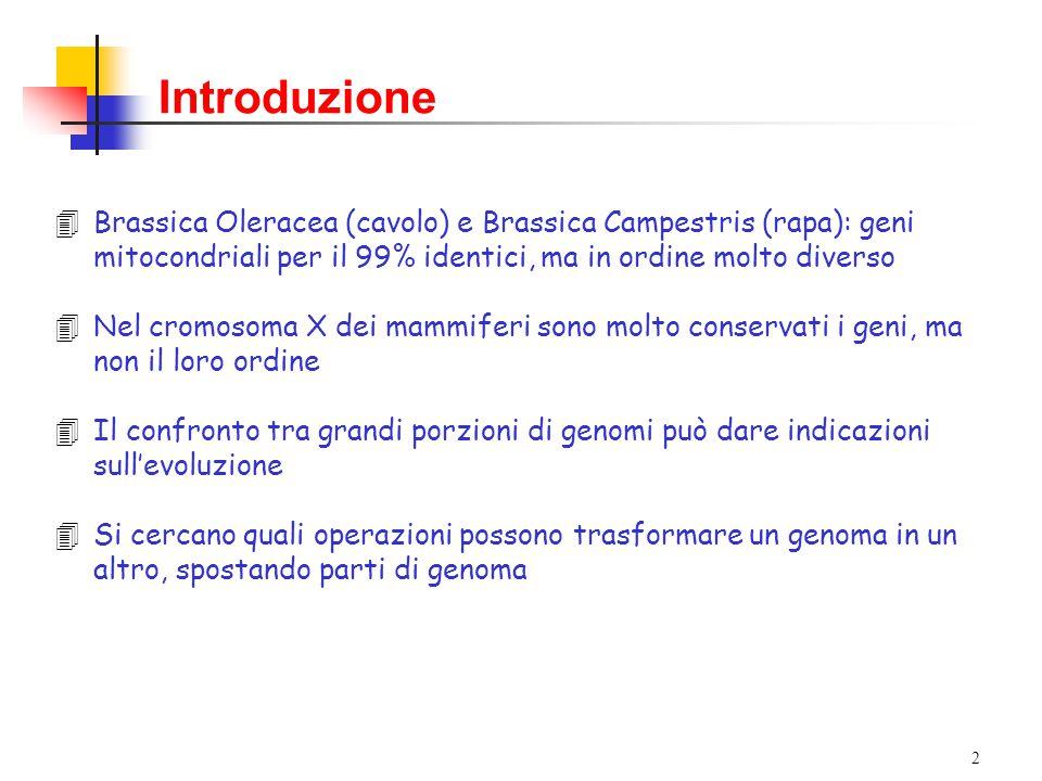 2 4Brassica Oleracea (cavolo) e Brassica Campestris (rapa): geni mitocondriali per il 99% identici, ma in ordine molto diverso 4Nel cromosoma X dei mammiferi sono molto conservati i geni, ma non il loro ordine 4Il confronto tra grandi porzioni di genomi può dare indicazioni sull'evoluzione 4Si cercano quali operazioni possono trasformare un genoma in un altro, spostando parti di genoma Introduzione