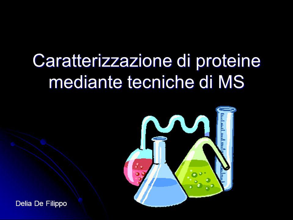 Caratterizzazione di proteine mediante tecniche di MS Delia De Filippo