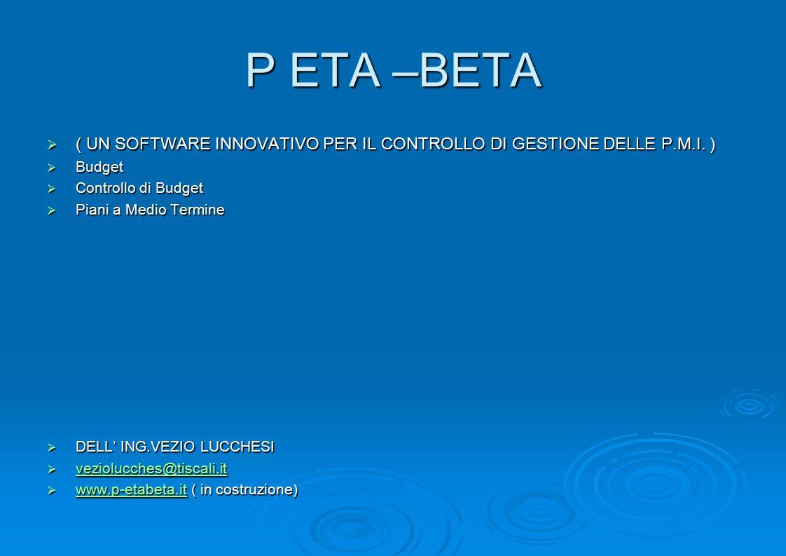 P ETA –BETA  ( UN SOFTWARE INNOVATIVO PER IL CONTROLLO DI GESTIONE DELLE P.M.I.