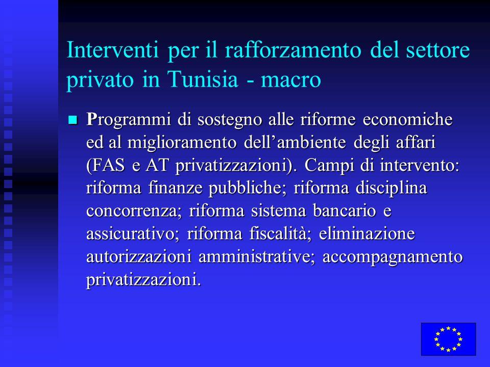 Interventi per il rafforzamento del settore privato in Tunisia - macro Programmi di sostegno alle riforme economiche ed al miglioramento dell'ambiente degli affari (FAS e AT privatizzazioni).