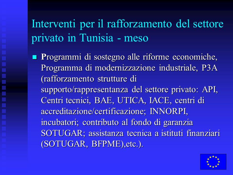 Interventi per il rafforzamento del settore privato in Tunisia - meso Programmi di sostegno alle riforme economiche, Programma di modernizzazione indu