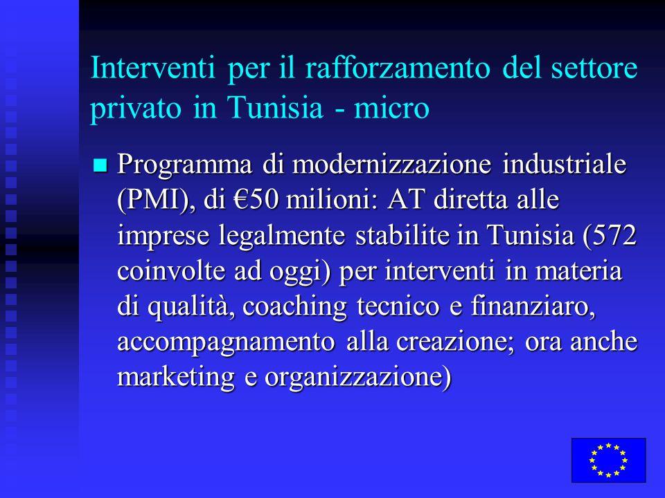 Interventi per il rafforzamento del settore privato in Tunisia - micro Programma di modernizzazione industriale (PMI), di €50 milioni: AT diretta alle