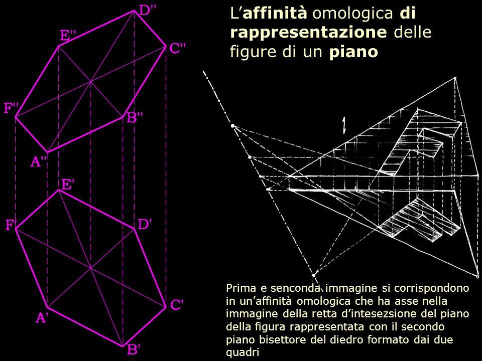 L'affinità omologica di rappresentazione delle figure di un piano Prima e senconda immagine si corrispondono in un'affinità omologica che ha asse nell