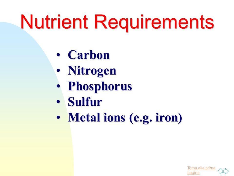Torna alla prima pagina Nutrient Requirements CarbonCarbon NitrogenNitrogen PhosphorusPhosphorus SulfurSulfur Metal ions (e.g.
