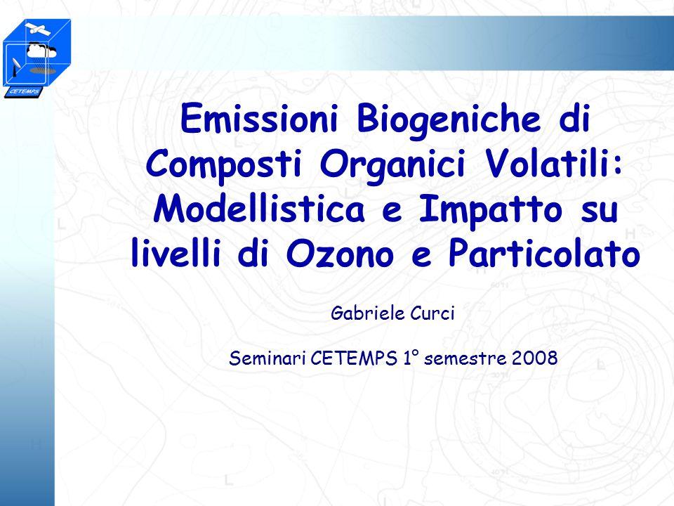 Emissioni Biogeniche di Composti Organici Volatili: Modellistica e Impatto su livelli di Ozono e Particolato Gabriele Curci Seminari CETEMPS 1° semestre 2008