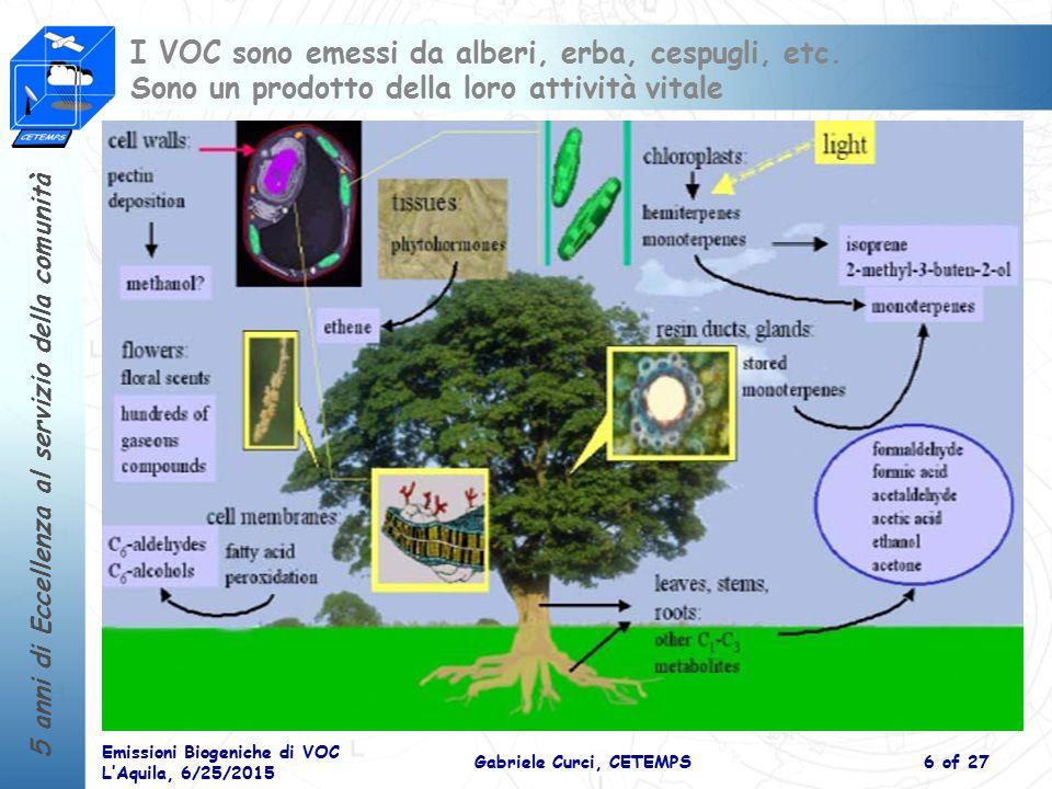 5 anni di Eccellenza al servizio della comunità Emissioni Biogeniche di VOC L'Aquila, 6/25/2015 Gabriele Curci, CETEMPS6 of 27 I VOC sono emessi da alberi, erba, cespugli, etc.