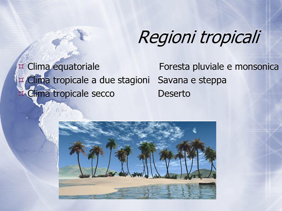 Regioni tropicali  Clima equatoriale Foresta pluviale e monsonica  Clima tropicale a due stagioniSavana e steppa  Clima tropicale seccoDeserto  Cl