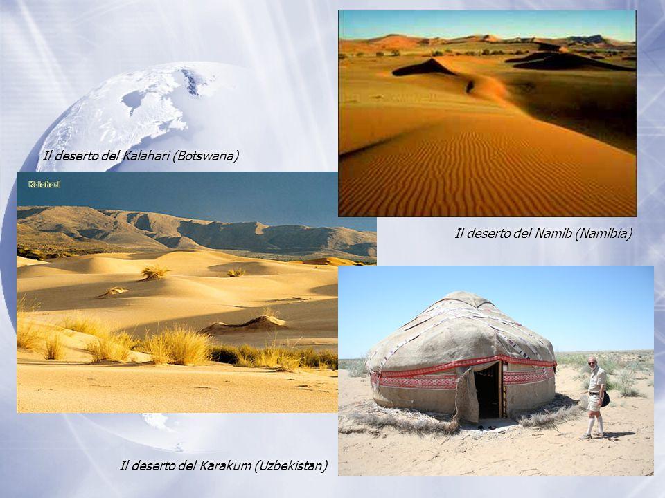 Il deserto del Kalahari (Botswana) Il deserto del Karakum (Uzbekistan) Il deserto del Namib (Namibia)