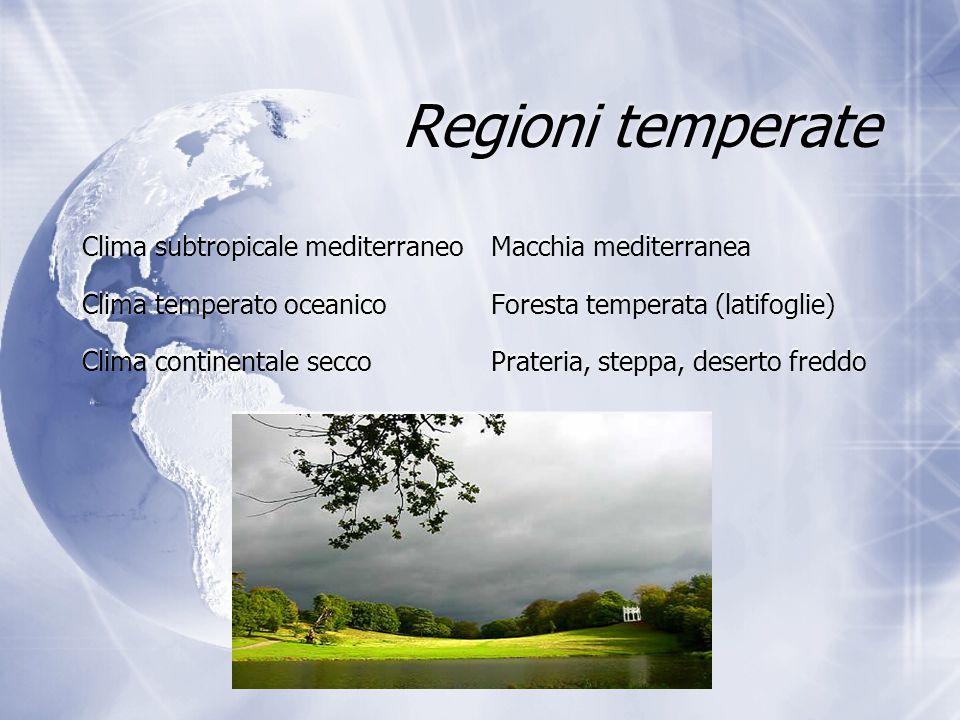 Regioni temperate Clima subtropicale mediterraneo Macchia mediterranea Clima temperato oceanico Foresta temperata (latifoglie) Clima continentale secc