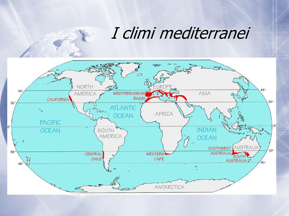 I climi mediterranei