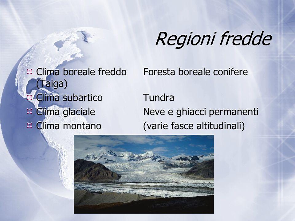 Regioni fredde  Clima boreale freddoForesta boreale conifere (Taiga)  Clima subarticoTundra  Clima glacialeNeve e ghiacci permanenti  Clima montan