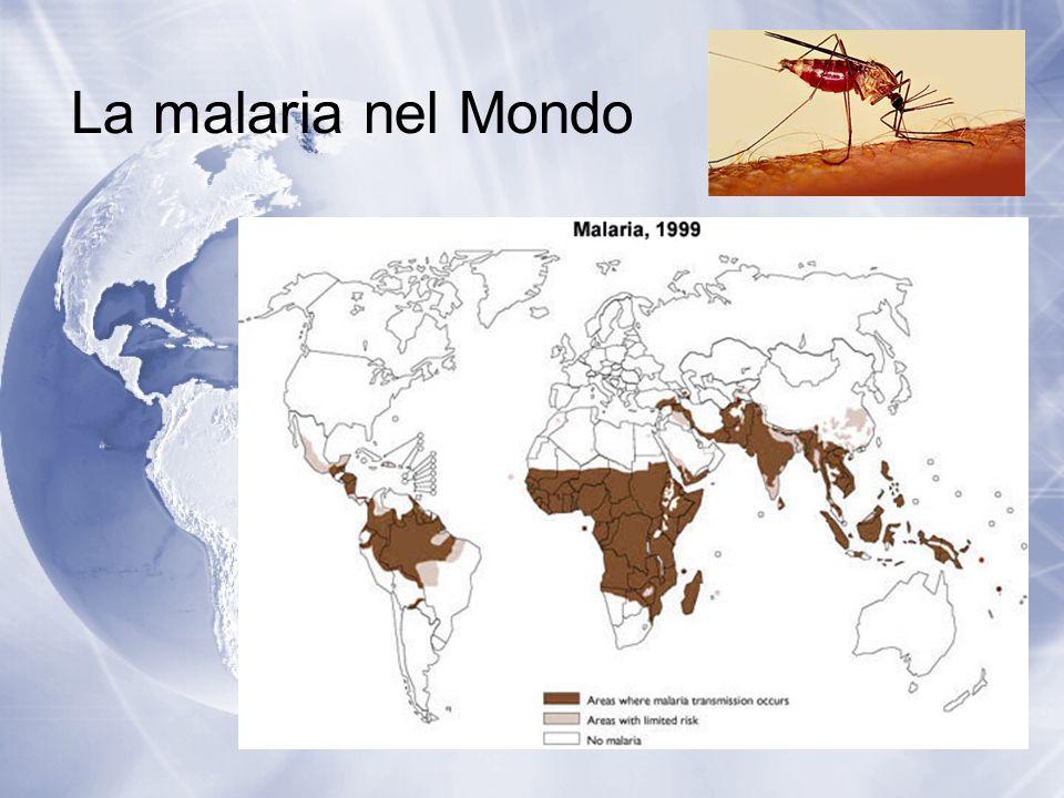 La malaria nel Mondo