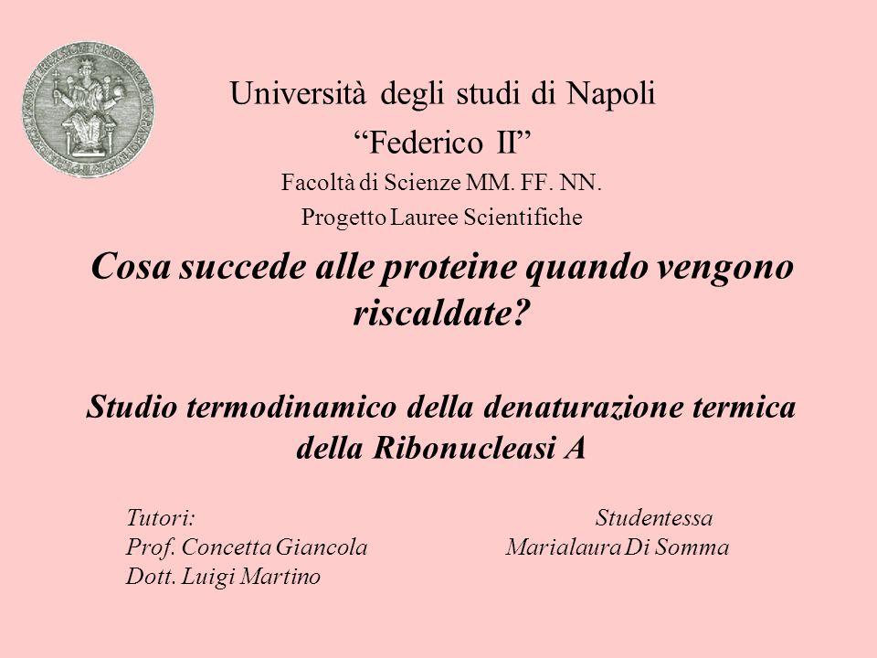 """Università degli studi di Napoli """"Federico II"""" Facoltà di Scienze MM. FF. NN. Progetto Lauree Scientifiche Cosa succede alle proteine quando vengono r"""
