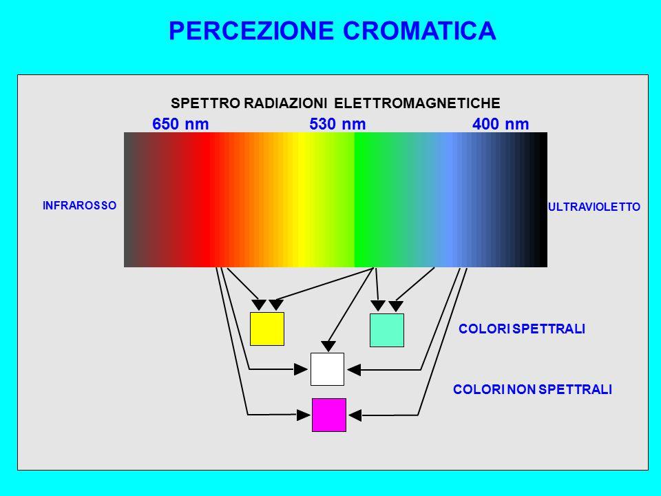 COLORI SPETTRALI COLORI NON SPETTRALI INFRAROSSO ULTRAVIOLETTO PERCEZIONE CROMATICA SPETTRO RADIAZIONI ELETTROMAGNETICHE 650 nm400 nm530 nm