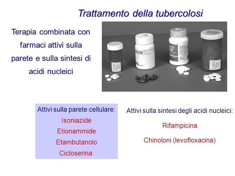 Trattamento della tubercolosi Attivi sulla parete cellulare: Isoniazide Etionammide Etambutanolo Cicloserina Attivi sulla sintesi degli acidi nucleici