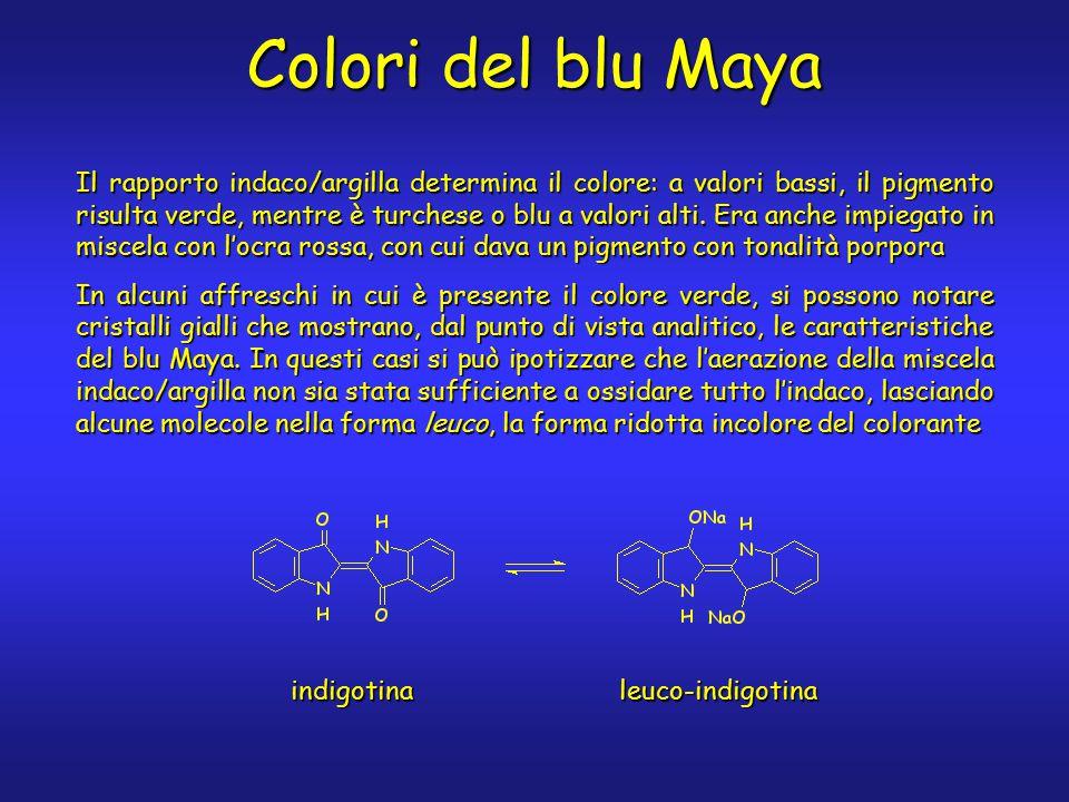 Colori del blu Maya Il rapporto indaco/argilla determina il colore: a valori bassi, il pigmento risulta verde, mentre è turchese o blu a valori alti.