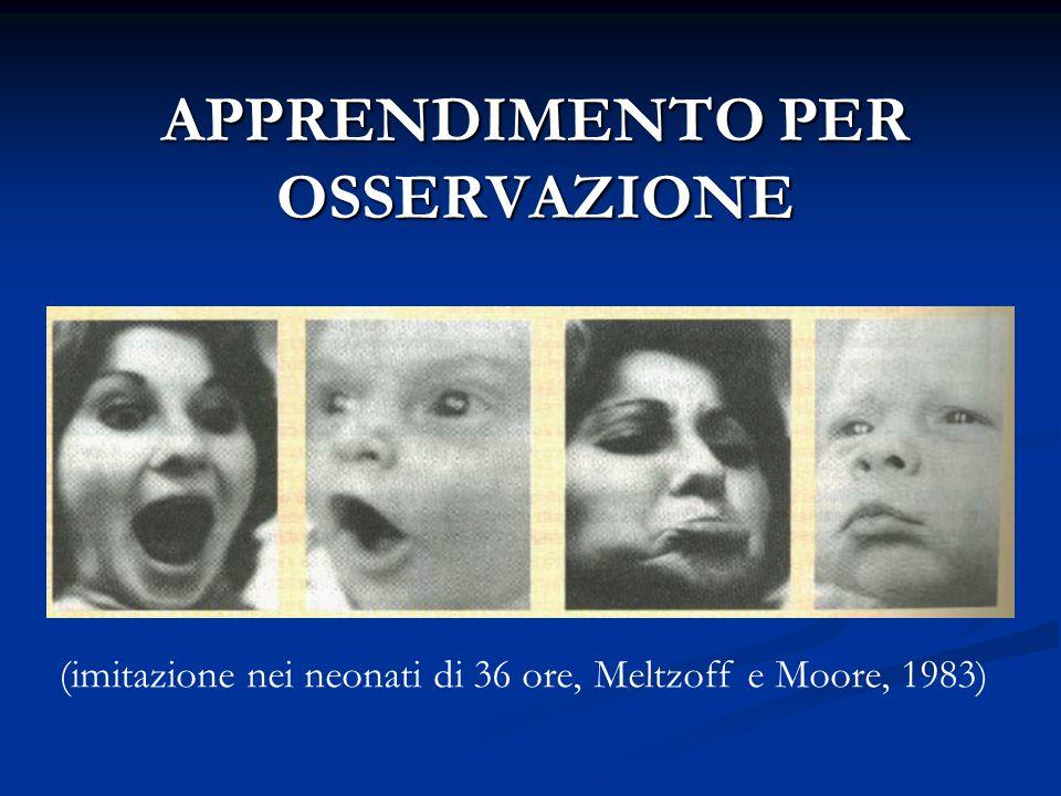 APPRENDIMENTO PER OSSERVAZIONE (imitazione nei neonati di 36 ore, Meltzoff e Moore, 1983)