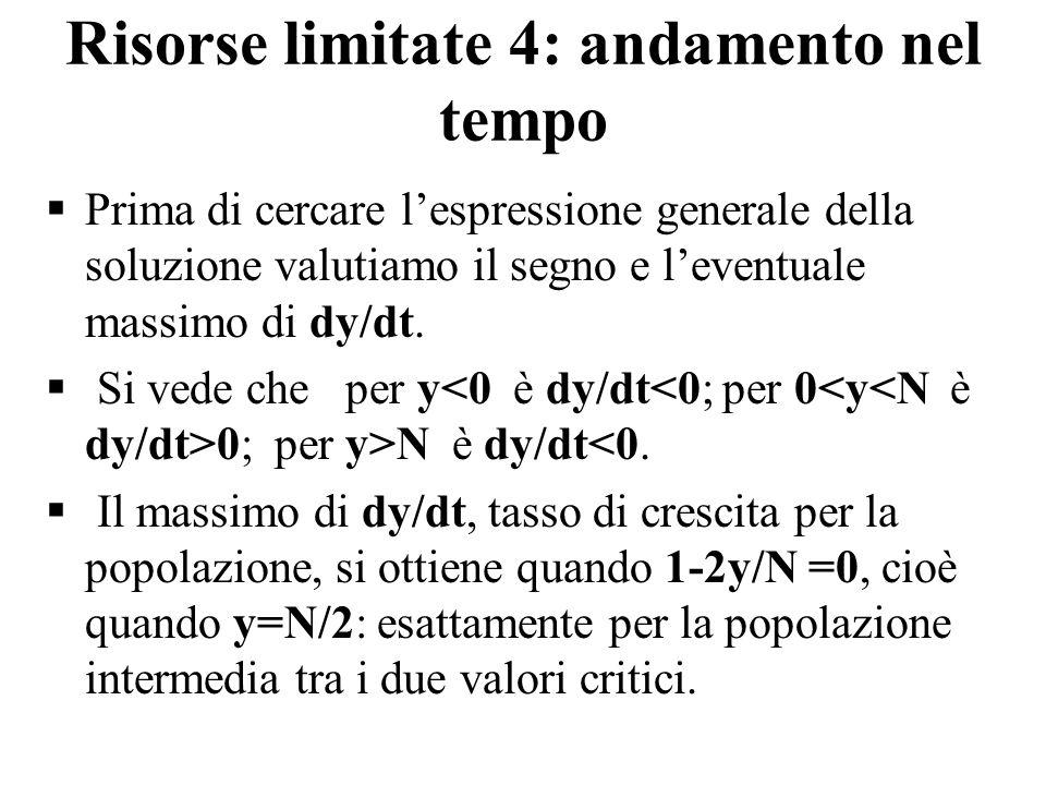 Risorse limitate 4: andamento nel tempo  Prima di cercare l'espressione generale della soluzione valutiamo il segno e l'eventuale massimo di dy/dt. 