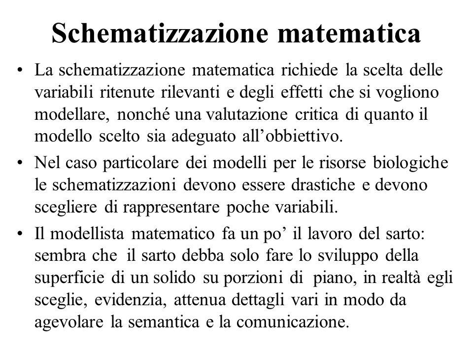 Schematizzazione matematica La schematizzazione matematica richiede la scelta delle variabili ritenute rilevanti e degli effetti che si vogliono model