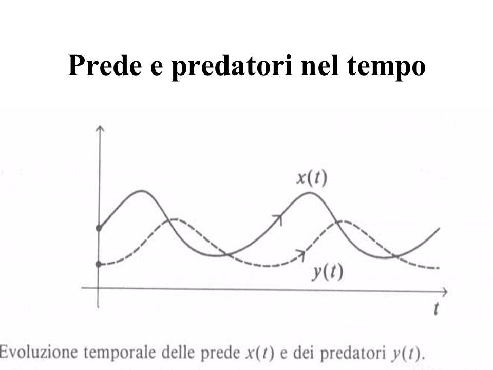 Prede e predatori nel tempo