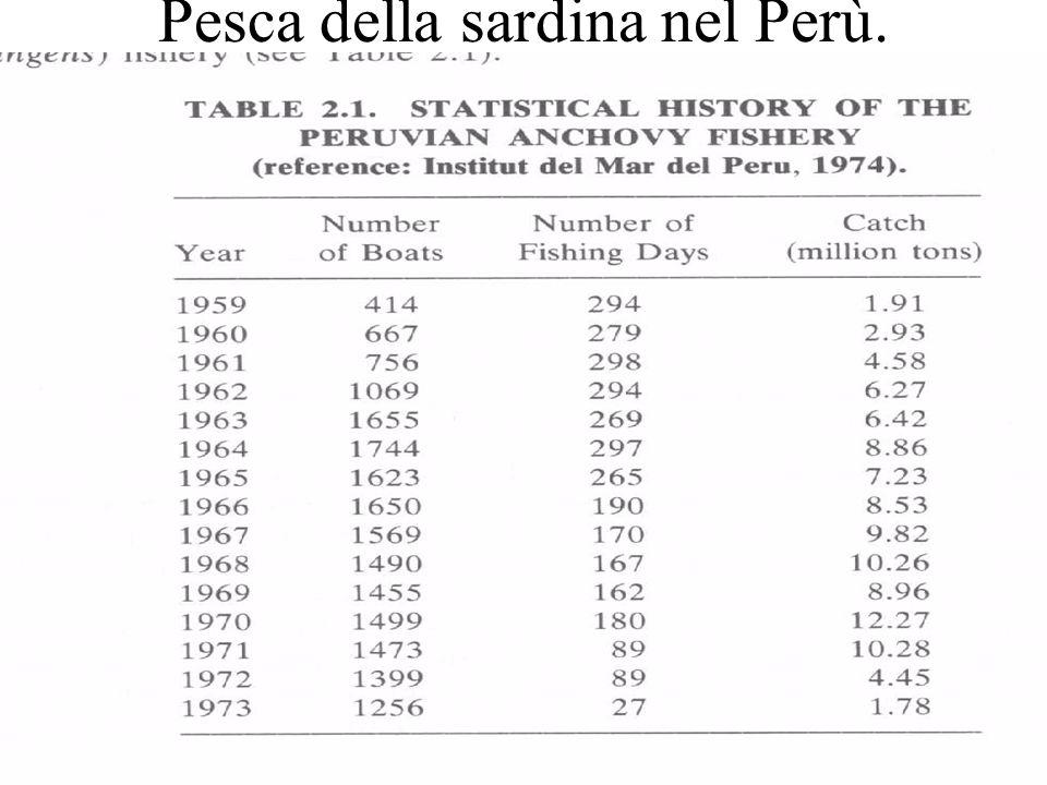 Pesca della sardina nel Perù.