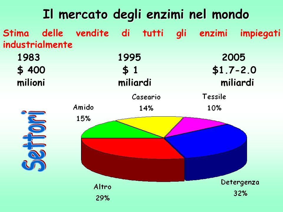 Il mercato degli enzimi nel mondo Stima delle vendite di tutti gli enzimi impiegati industrialmente 1983 1995 2005 $ 400 $ 1 $1.7-2.0 milioni miliardi