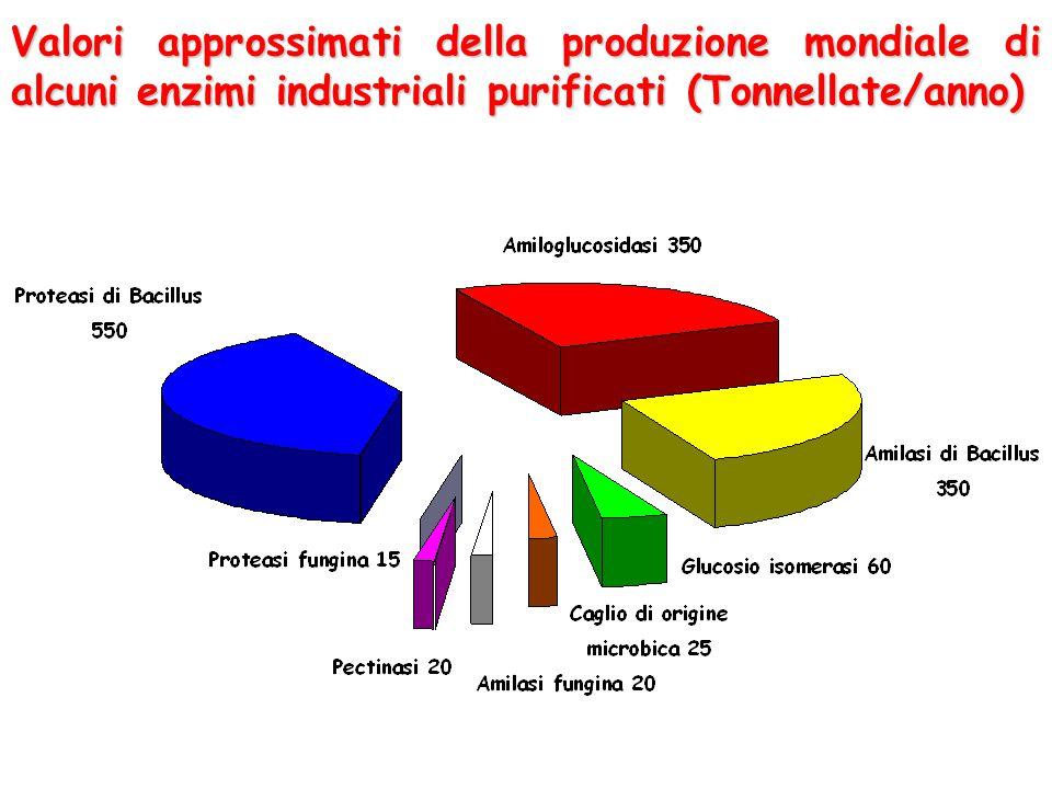 Valori approssimati della produzione mondiale di alcuni enzimi industriali purificati (Tonnellate/anno)
