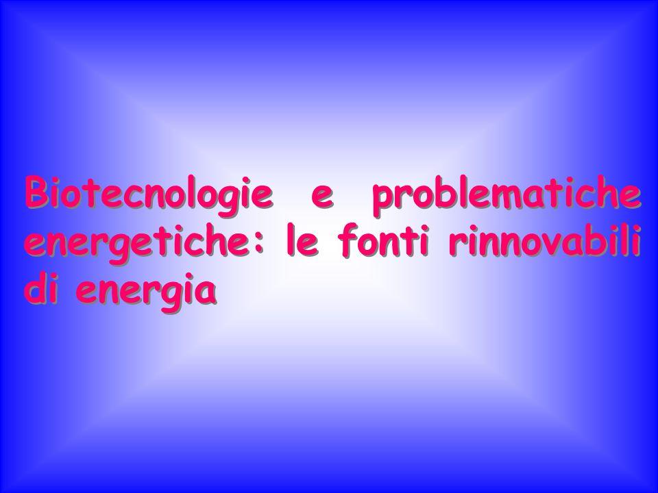 Biotecnologie e problematiche energetiche: le fonti rinnovabili di energia