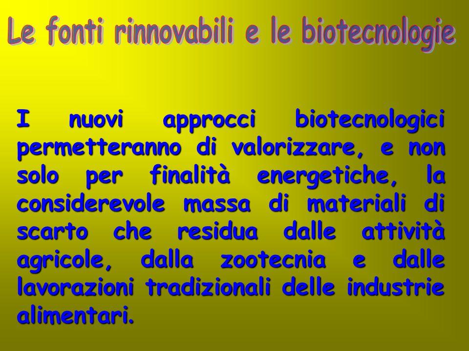 I nuovi approcci biotecnologici permetteranno di valorizzare, e non solo per finalità energetiche, la considerevole massa di materiali di scarto che r