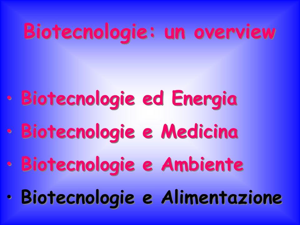 Biotecnologie: un overview Biotecnologie ed Energia Biotecnologie e Medicina Biotecnologie e Ambiente Biotecnologie e Alimentazione Biotecnologie: un