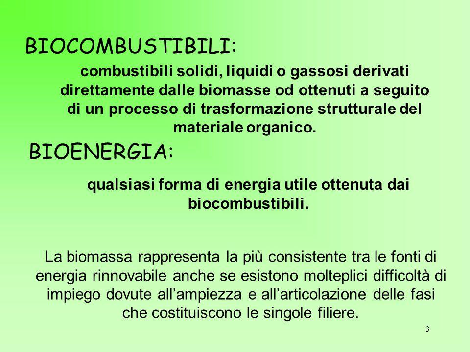 3 BIOCOMBUSTIBILI: combustibili solidi, liquidi o gassosi derivati direttamente dalle biomasse od ottenuti a seguito di un processo di trasformazione