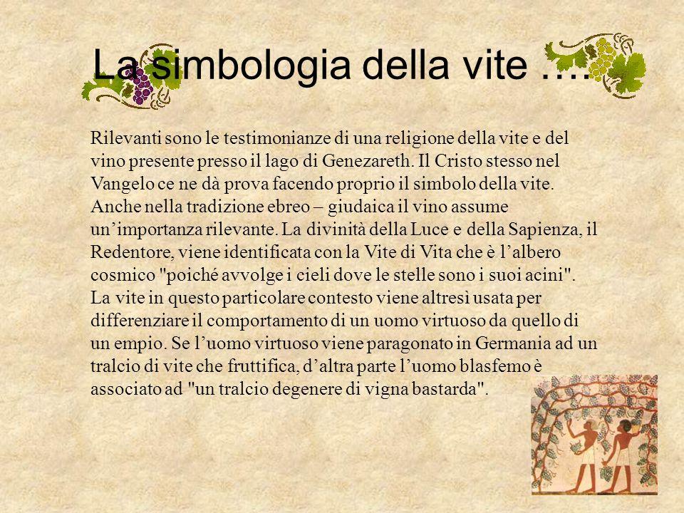 La simbologia della vite Fin dall'antichità il vino si carica di significati allegorici e diviene oggetto di culto. Già nell'antica Grecia si conoscev