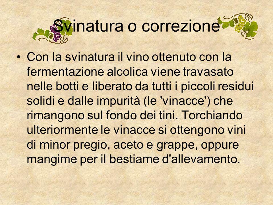 Vinificazione in bianco o rosso Il processo di vinificazione è diverso a seconda che si vogliano ottenere vini bianchi oppure rossi. Se il mosto viene