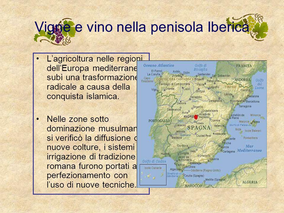 SPAGNA La Spagna ha nel vino una tradizione millenaria, favorita da un'ideale collocazione geografica. La viticoltura riveste una straordinaria import