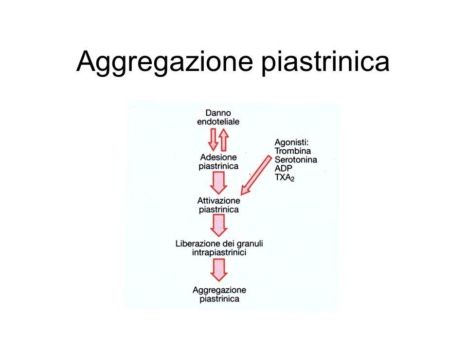 Modulazione attività piastrinica L'aggregazione piastrinica è modulata dalla presenza di attivatori ed inibitori nel sangue.