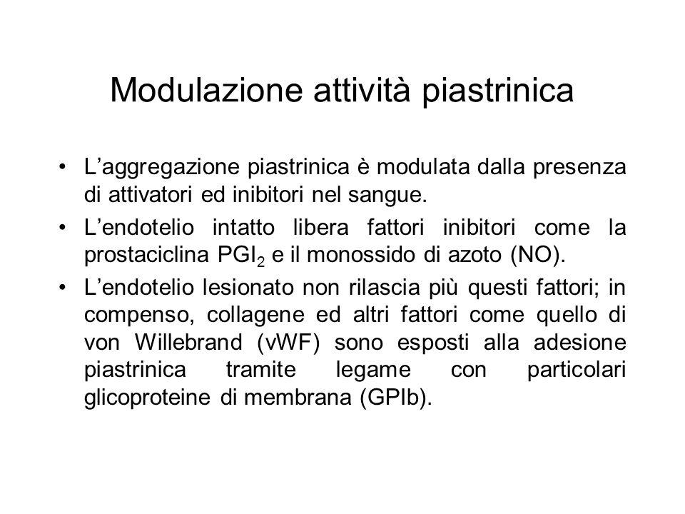 Modulazione attività piastrinica L'aggregazione piastrinica è modulata dalla presenza di attivatori ed inibitori nel sangue. L'endotelio intatto liber